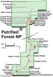 petrified forest map