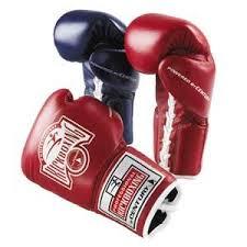kickboxing glove