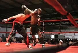 kickboxing fights
