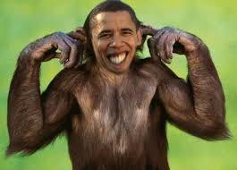 http://t0.gstatic.com/images?q=tbn:-XmA5baPSGCGcM:http://1stnews.org/images/michelle-obama-monkey.jpg&t=1