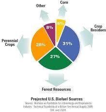 biomass biofuels
