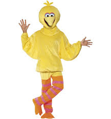 big bird fancy dress