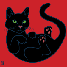 black cat t shirts