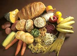 food high in carbohydrate