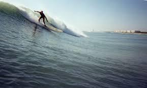 sebastian inlet surf