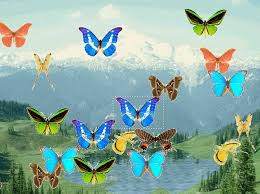 animated butterflies pictures