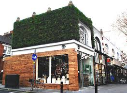 eco friendly shop