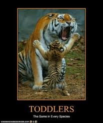 funny toddlers