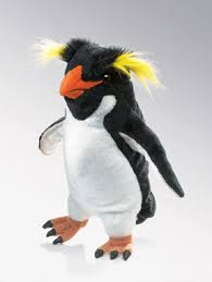 rockhopper penguin picture
