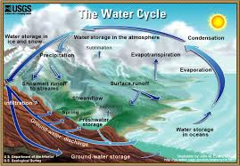 a diagram of the water cycle