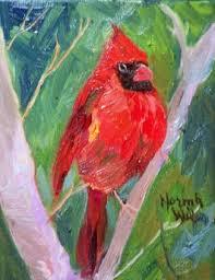 bird cardinal picture