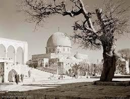 صور فلسطينية جميلة Dome-Rock