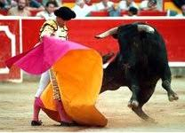peru bullfighting