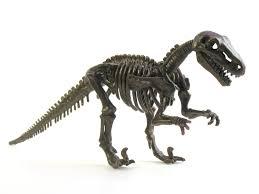 dino skeletons