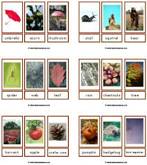 spring flash cards