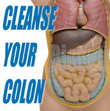 colon cleansed
