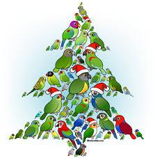 parrot designs