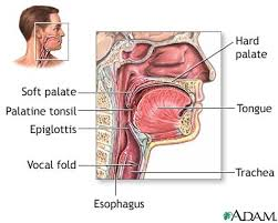 dysphagia pictures