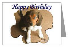 puppy birthday cards