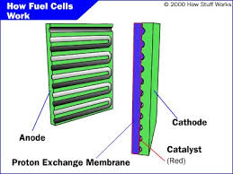 fuel cell parts