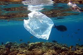 floating bag