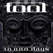 1000 days tool