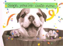 birthday card dog