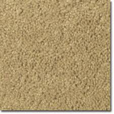 carpet images