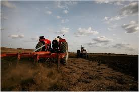 agriculture sudan