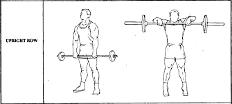 upright rows exercise