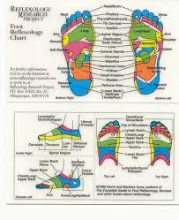 reflexology diagram