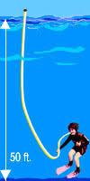 long snorkel