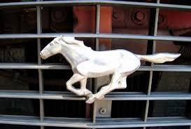 ford mustang horse