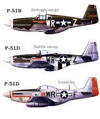 p 51 models