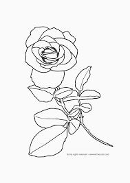free rose images