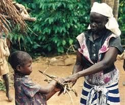life africa
