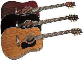 acoustic guitar washburn