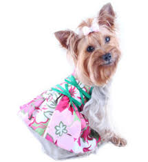 dresses for dogs