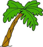 palm tree animated