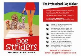 dog walking posters