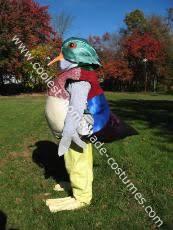 ducks costumes