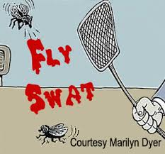 fly killing
