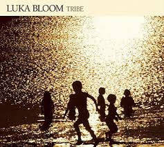 Luka Bloom - Tribe