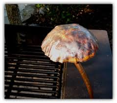 barbecue grill lights