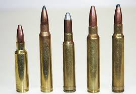416 weatherby mag
