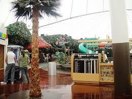 rainforest cafe sawgrass