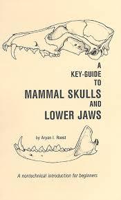 mammal skulls