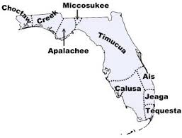 calusa tribe pictures