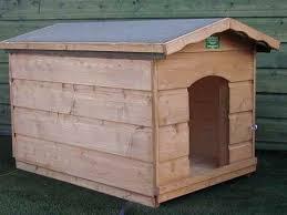labrador dog kennel