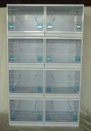 canary breeding cage